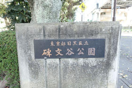 碑文谷公園 アクセス