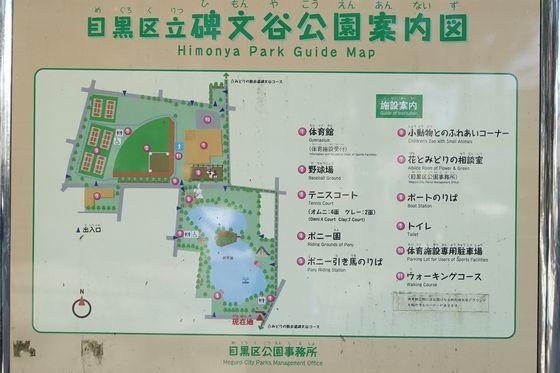 碑文谷公園 園内マップ