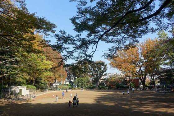 紅葉 本門寺公園