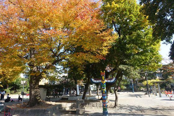 紅葉 清水池公園