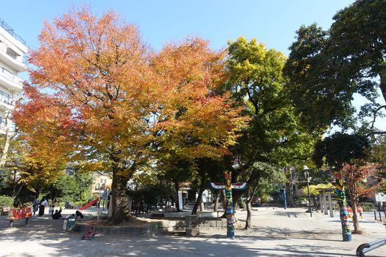 清水池公園 こども広場 紅葉