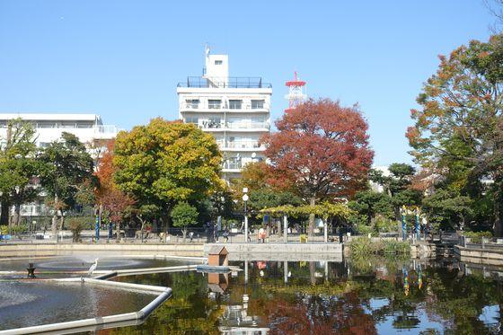秋 清水池公園