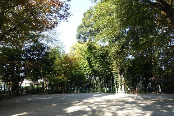 すずめのお宿緑地公園 中央広場