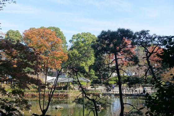 秋の戸越公園