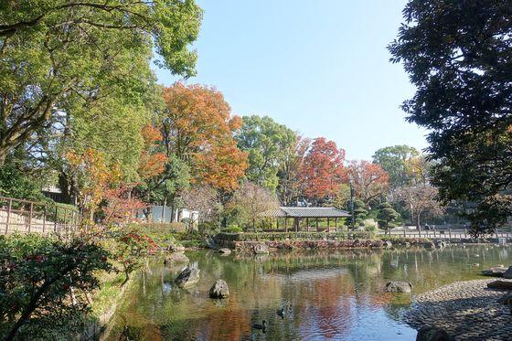 戸越公園 秋