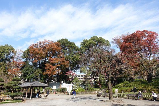 秋 戸越公園