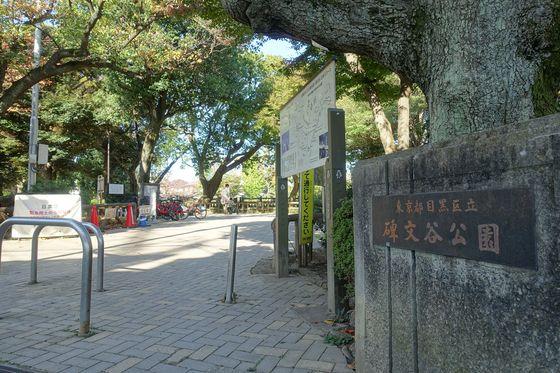 碑文谷公園 秋