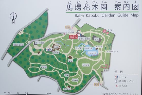馬場花木園 園内マップ